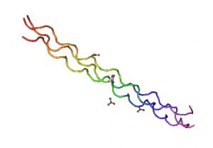 膠原蛋白三股結構